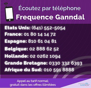 Frequence-Ganndal-Web-Banner-300x290